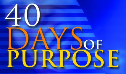 Open '40 Days of Purpose - What was it all about!'