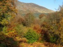 Autumn Colours, Glenlyon