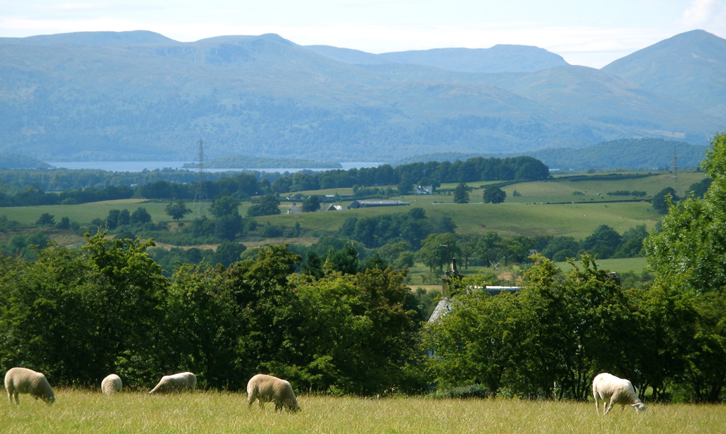 View across the glebe from the Kirk to Loch Lomond
