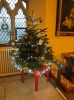Click here to view the '2013 Christams Trees' album