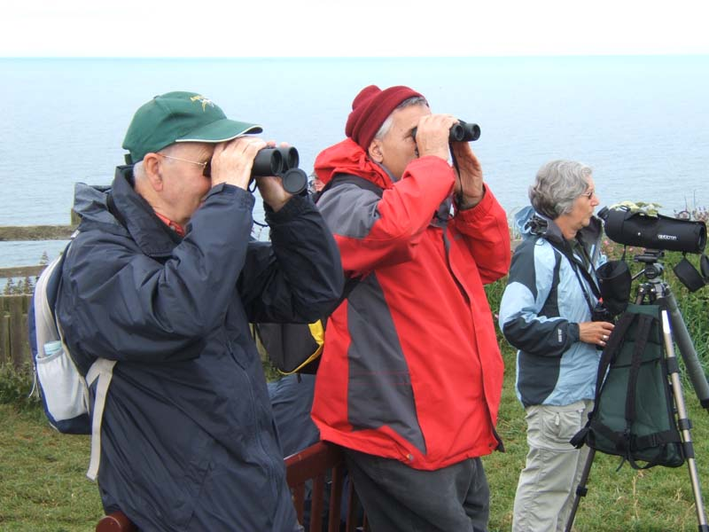 Birders at Bempton Cliffs