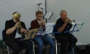 The Brass Ensemble Entertain