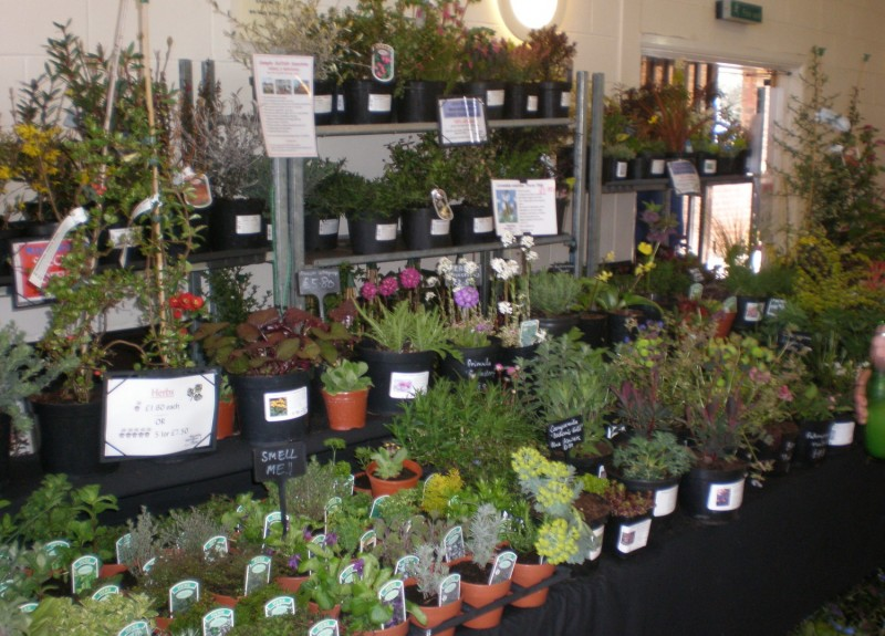 One of the Stalls at the Plant Fayre