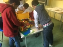 2nd team building their house and extension