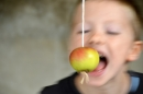 Apple-eating game