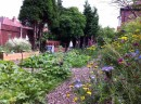 Open Community wildlife garden