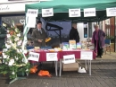 Click here to view the 'Fore Street Christmas Fayre 8th Dec 2013' album
