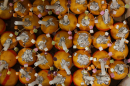 Christingles ready to be distributed