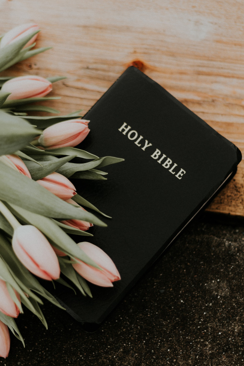 Bible and Tulips