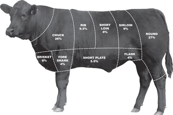 Diagram of cow showing cuts of meat
