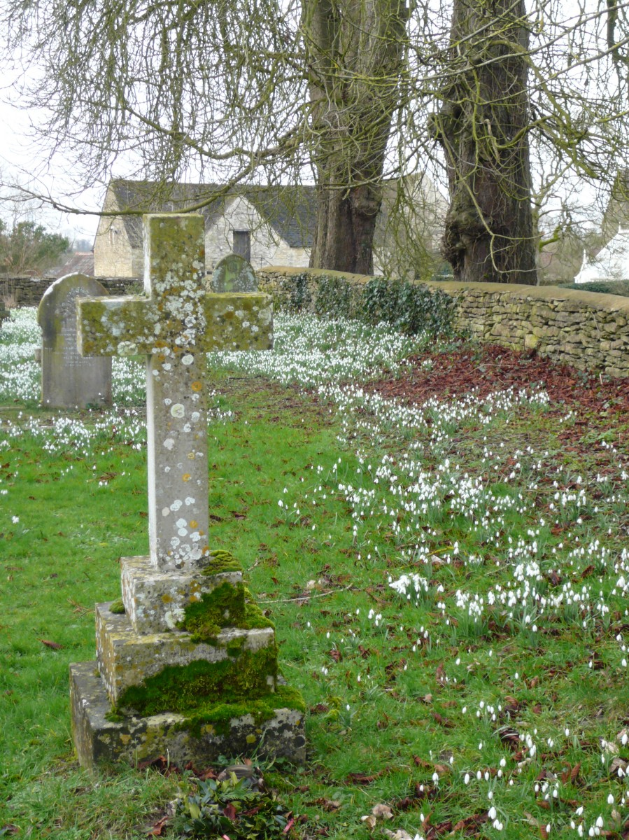 Photo of grave in Somerford Keynes churchyard