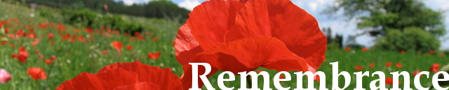 Poppy of remembrance banner
