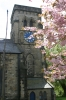 Click here to view the 'Christ Church in Springtime' album
