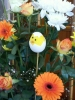 A cheeky chick in the arrangement for Easter Sunday!
