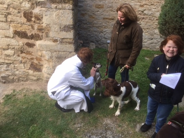 Blessing of the animals @ St Mary's, Grendon Pet Service 22.10.17