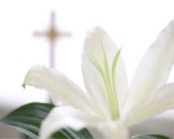 Image of lily and cross