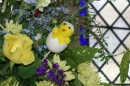 Close uo of a chick hiding in the floral display