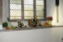 Trefoil Guild's harvest window