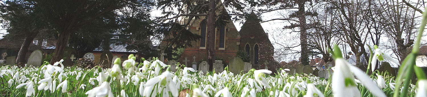 The church and churchyard in the spring