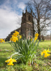 Spring at Christ Church