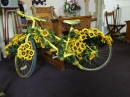 Cycle and flowers