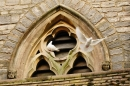 Doves in the tower