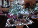 Click here to view the 'Christmas Tree Festival' album