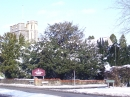 A wintry view of the church