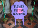 Ninfield Flower Festival 2019