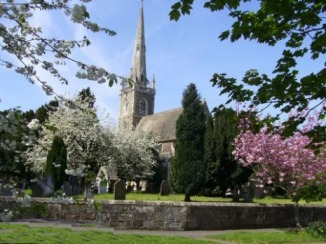Cherry blossom at All Saints Church Newton on Ouse York