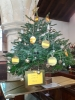 Click here to view the 'Melsonby Christmas Tree Festival' album