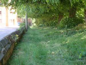 St Lawrence Churchyard - The North Path