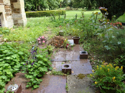 St Lawrence Churchyard - August Report