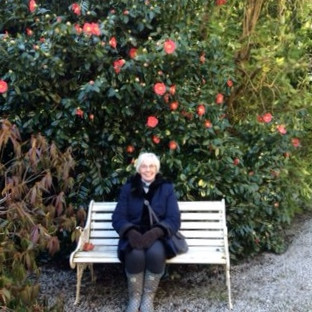 And finally.. Reverend Ellie surrounded by beautiful camellias!