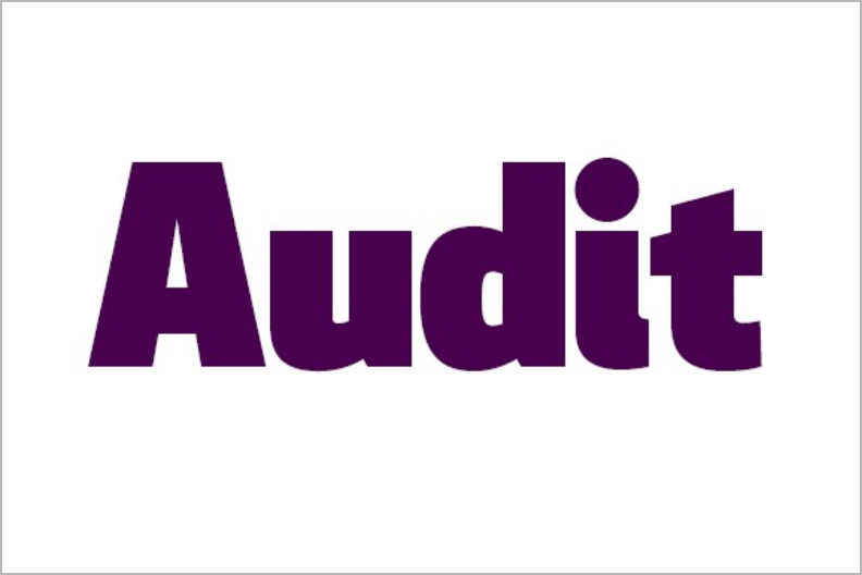 Audit and Action Plan