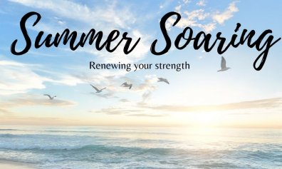 Open Summer Soaring online services