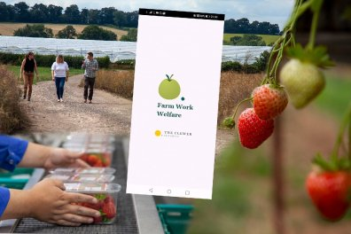 Open Farm Worker Welfare App picks the good fight