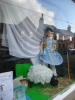 Scarecrow Trail - On a theme of nursery rhymes and fairy tales