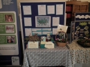 Etherow Park Display