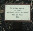 Click here to view the 'MU Memorial Tree March 2013 ' album