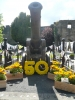 Ludlow - 50 years of Britain in Bloom