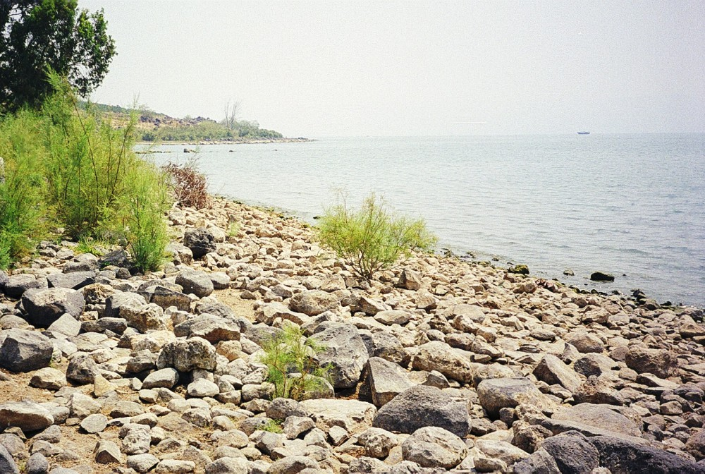 Shore of the Sea of Galilee at Mensa Christi