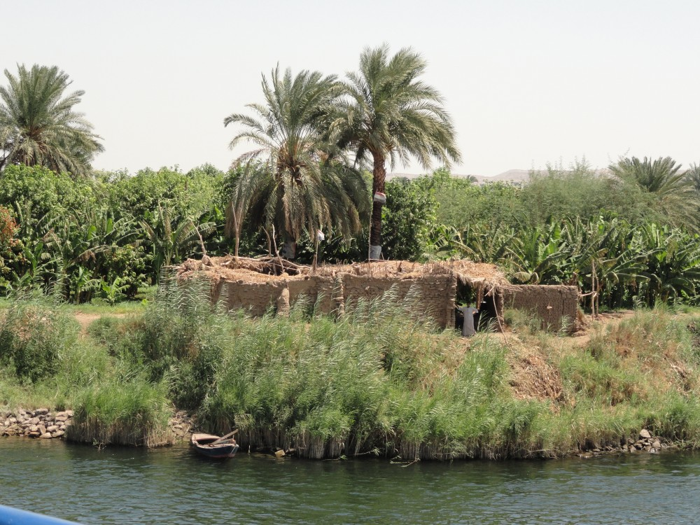 Fertile smallholding beside the Nile
