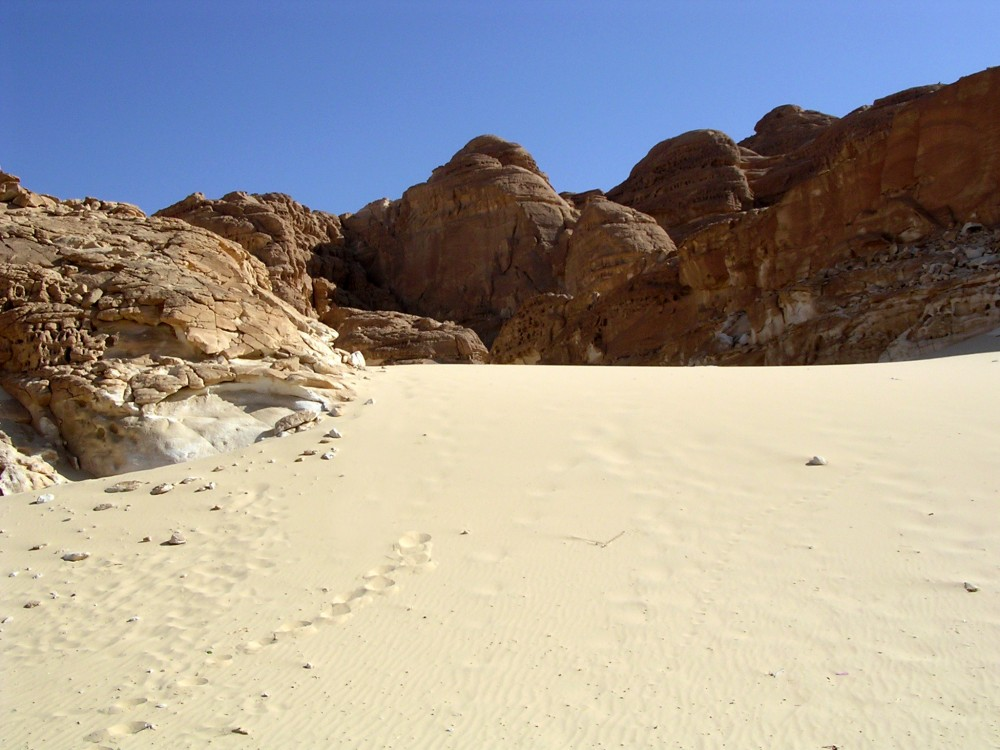 Sand dune on the Sinai Peninsula