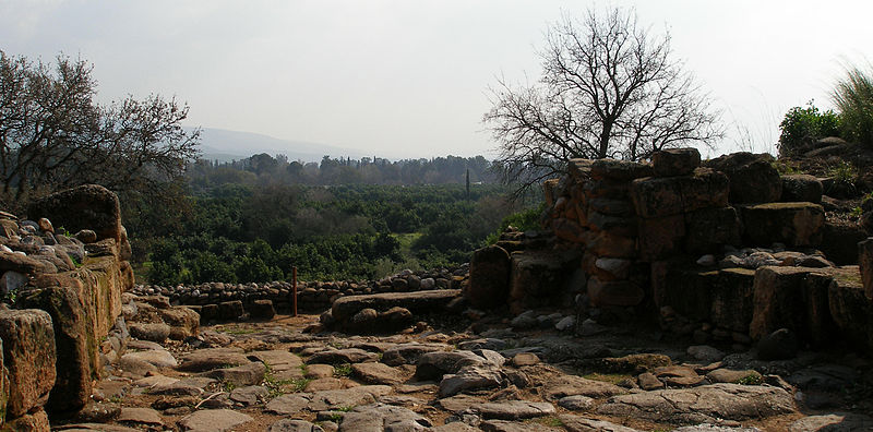View from the ruins of Dan