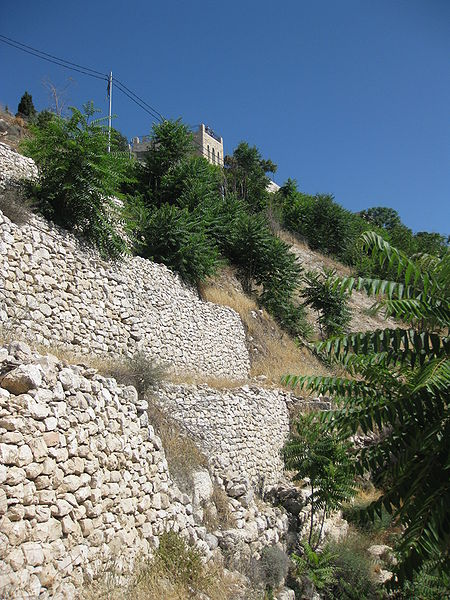 Jebusite wall at City of David (Deror avi)