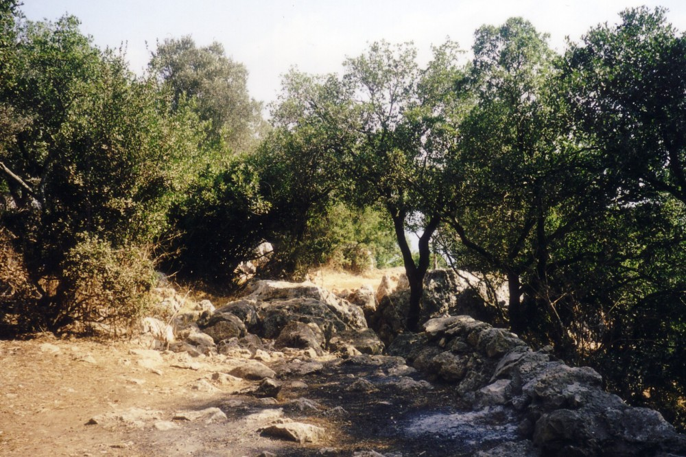 An ancient stone altar at Mount Carmel