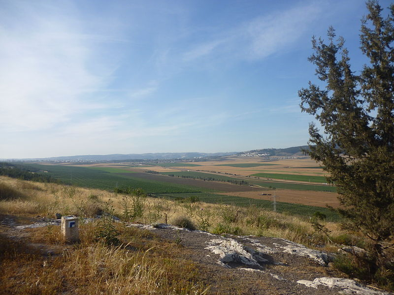 The Jezreel Valley from Tel Yize'el (Daniel Ventura)