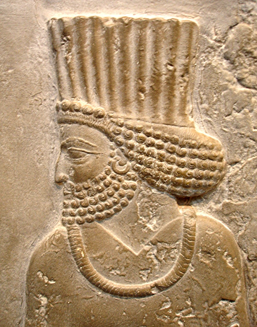 Persian Official on a relief from the Palace of Darius at Persepolis (British Museum)