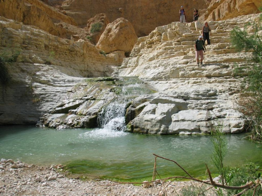 Nahal Arugot - a stream in the Judaean Desert